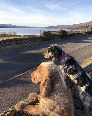 Charlie and Lola looking for the Loch Torridon monster